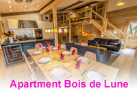 Location appartement au centre de village de Samoens Bois de Lune