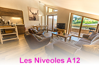 Stylish 3 bedroom apartment in Morillon
